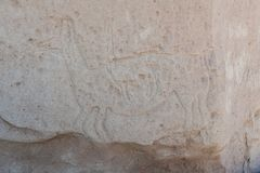 Ancient Petroglyphs on the Rocks at Yerbas Buenas in Atacama Desert in Chile. South America Stock Photography