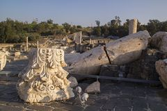 Ancient pillars of ruined roman town Beit Shean (Scythopolis), I Royalty Free Stock Photos