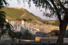 Ancient pillars of ruined roman town Beit Shean (Scythopolis), I Royalty Free Stock Photo