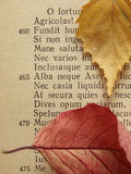 Ancient poem 1. Fragment of the page of Virgil's Georgicon (ancient agricultural didactic poem Royalty Free Stock Image