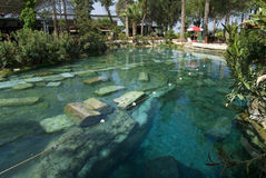 Ancient pool in Pamukkale. Stock Photography