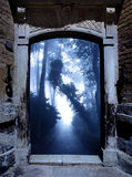 Ancient portal in foggy forest Royalty Free Stock Photography