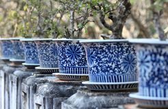 Ancient pots for plants Royalty Free Stock Photo