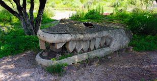 Ancient prehispanic crocodile made of stone. Prehispanic piece composed by different stones, joined together in a crocodile shape with his sharp fangs and the royalty free stock photos
