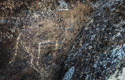 Ancient prehistoric drawings of various animals on the rock royalty free stock photography