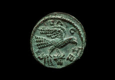 Ancient provincial roman coin with bird image. Isolated on black, close-up shot Royalty Free Stock Photography