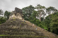 Ancient Pyramid in Palenque. Ancient pyramid in the middle of the jungle, Palenque mexico Stock Photography