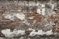 Ancient red brick wall with remaining plaster spots Royalty Free Stock Image