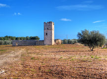 Ancient Red Stones Tower of Giovinazzo. Apulia. Royalty Free Stock Photo