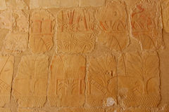 Ancient relief on the wall of the Hatshepsut temple in Thebes/Luxor in Egypt, near the valley of the kings with the image Stock Images