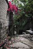 Ancient road, blue brick and red flowers Royalty Free Stock Photos