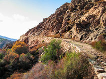 Ancient road in Calanques de Piana Royalty Free Stock Photos