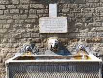 Ancient Rome Drinking Fountain, Italy. An ancient Roman drinking fountain and water trough, with a marble lion, near St Peter`s Square, Rome, Italy Stock Image