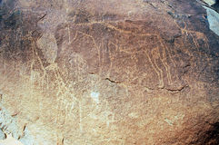 Ancient rock art in Niger depicting animals Stock Photography