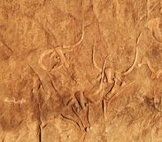 Ancient rock carving of a crying cow, Algeria Stock Image