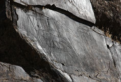 Ancient rock drawings, buffalo with calf, side view Stock Photography