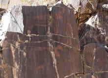 Ancient rock drawings, buffalos with big horns Stock Photography