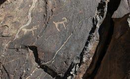 Ancient rock drawings, deer, dog Royalty Free Stock Photos