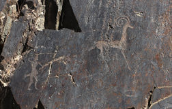 Ancient rock drawings, deer and human with the spear, hunting Stock Images