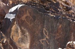 Ancient rock drawings, horses, dog, deer with big round horns Royalty Free Stock Photos