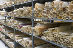 Ancient Rolled Maps. Archive rooms with ancient rolled paper maps Stock Photos