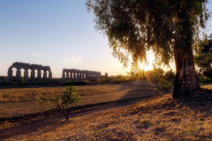 Ancient Roman aqueduct. Photographed from the top of a valley. In the background a beautiful sunset gives a fantastic light, on the right a backlit tree Stock Images