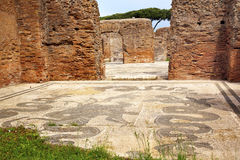 Ancient Roman Baths Neptune Mosaic Ostia Antica Royalty Free Stock Images