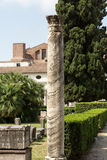 Ancient Roman column in the ruins of the Baths of Diocletian in Rome, Stock Images