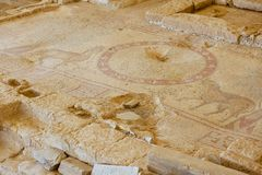 Ancient Roman floor mosaic in the Saint Stevens Church at an archeological site in Umm ar-Rasas, Jordan. UNESCO World heritage site stock images