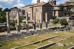 The Ancient Roman Forum and the Palatine Hill in Rome Italy Royalty Free Stock Image