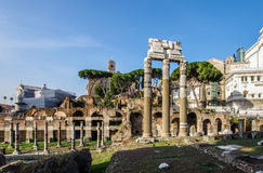 Ancient Roman Forum in the Rome Italy Stock Photo