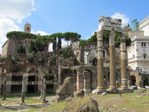 Ancient Roman Forum ruins in Rome Royalty Free Stock Photos