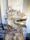 Ancient Roman Marble Statue Dog, Vatican Museum