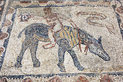 An ancient Roman mosaic depicting a man riding a horse at Volubilis in Morocco. Stock Photo