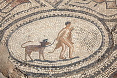 Ancient Roman mosaic. In Volubilis, Morocco, North Africa Stock Photography