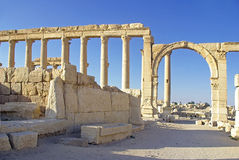 Ancient roman ruins. At the archaeological site of Palmyra, in the Syrian Desert Royalty Free Stock Photo