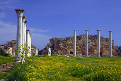 Ancient Roman site in Salamis. Roman archaeological site of ancient city of Salamis in Cyprus Royalty Free Stock Photos