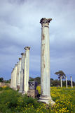 Ancient Roman site in Salamis Stock Photo