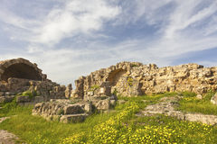 Ancient Roman site of Salamis. Royalty Free Stock Photos