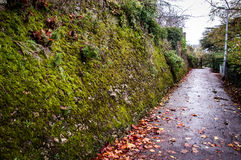 Ancient Roman wall Stock Photography