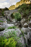 Ancient Romanic Bridge Stock Photography
