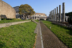Ancient Rome. Historical center of Rome with Coliseum and pillars of the Temple of Venus Royalty Free Stock Image