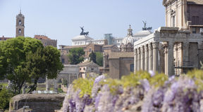 Ancient Rome, Italy. View of ruins in Ancient Rome, Italy on sunny day Stock Photos