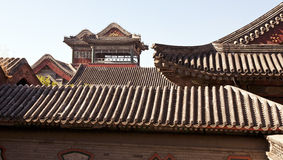 Ancient Rooftops. The curvature of the ancient rooftops of the buildings in Forbidden City in Beijing, China Royalty Free Stock Image