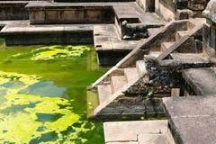 Ancient royal bathing pool. Ruins of  Kumara Pokuna (royal bathing pond) in ancient Sri Lanka capital Polonnaruwa Stock Photography