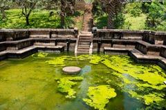 Ancient royal bathing pool. Ruins of  Kumara Pokuna (royal bathing pond) in ancient Sri Lanka capital Polonnaruwa Stock Image