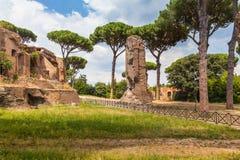 The ancient ruin in Rome near colosseum Stock Image