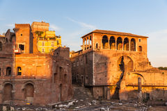 The ancient ruin in Rome Stock Image