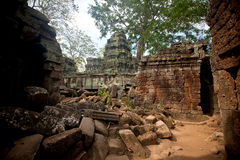 Ancient ruin of the Ta Phrom temple, Angkor Wat Cambodia Royalty Free Stock Photo