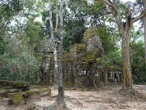 Ancient ruin at Ta Prohm Temple in Siem Reap, Cambodia Royalty Free Stock Photo
